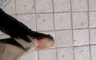 Un pie o la vida